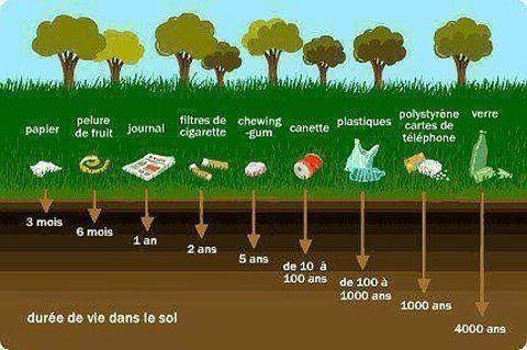 Duree de vie des dechets dans le sol for Duree de vie cumulus